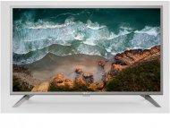 TESLA 40T319SF    DVB-T2/C/S2     Full HD